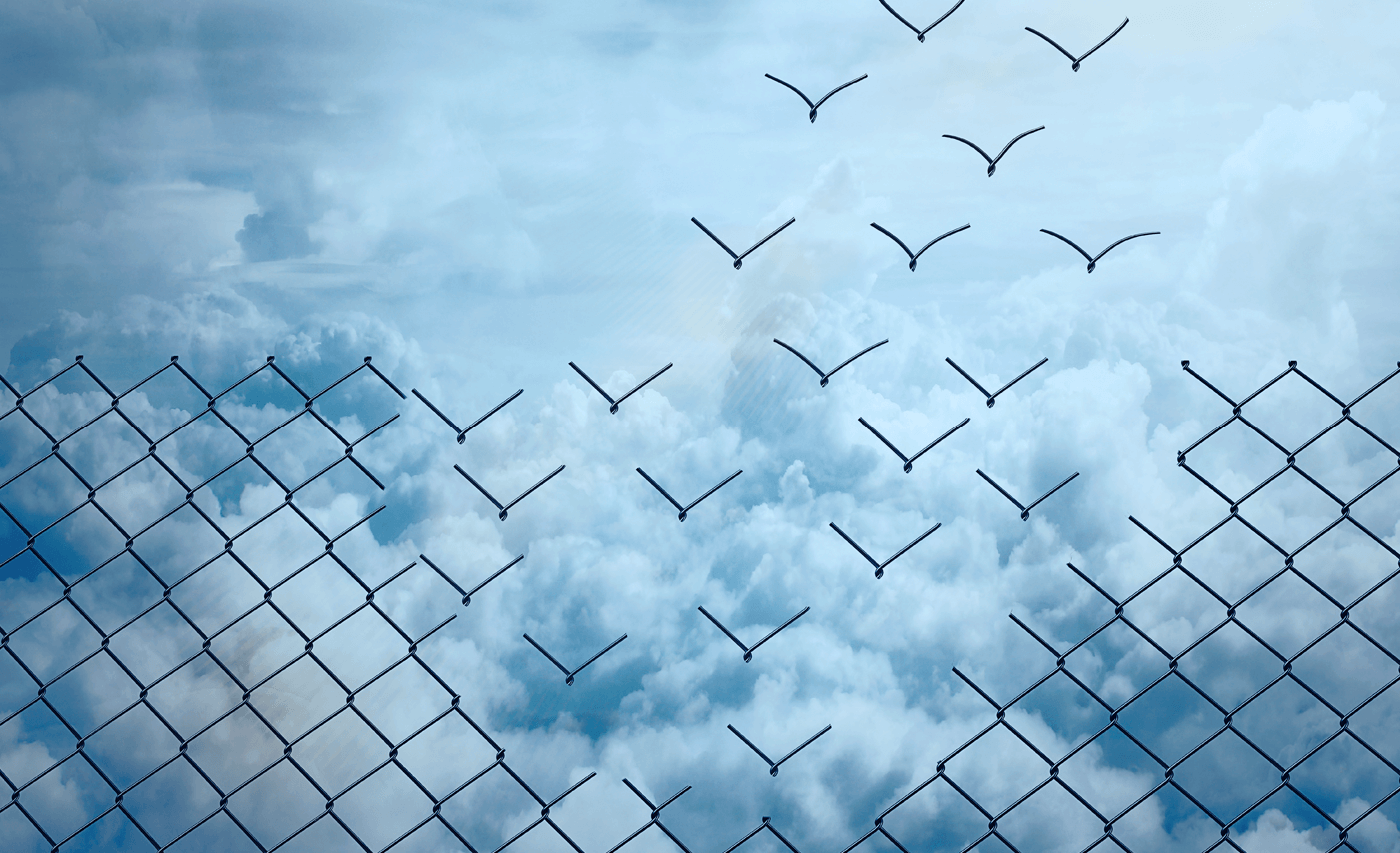Abstract Image of fence transitioning into birds